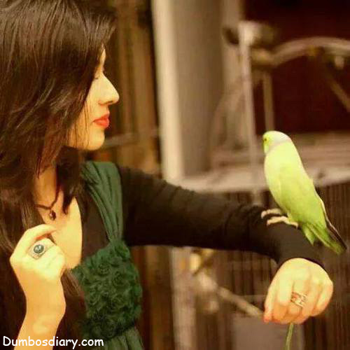 Girl with parrot dp