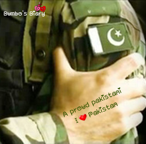 brave army man dp independence day